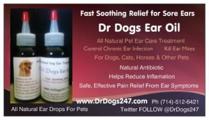 Natural Ear Medication for Pets